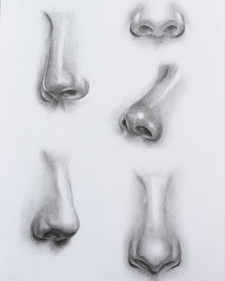 Nose drawing reference insta
