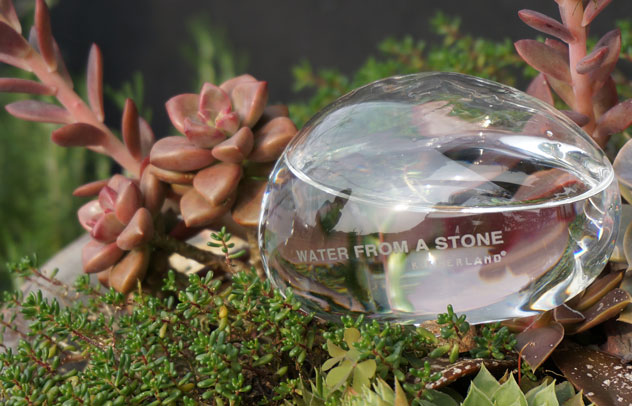 植木鉢の植物に水をやってくれるおしゃれなアイテム。【i】