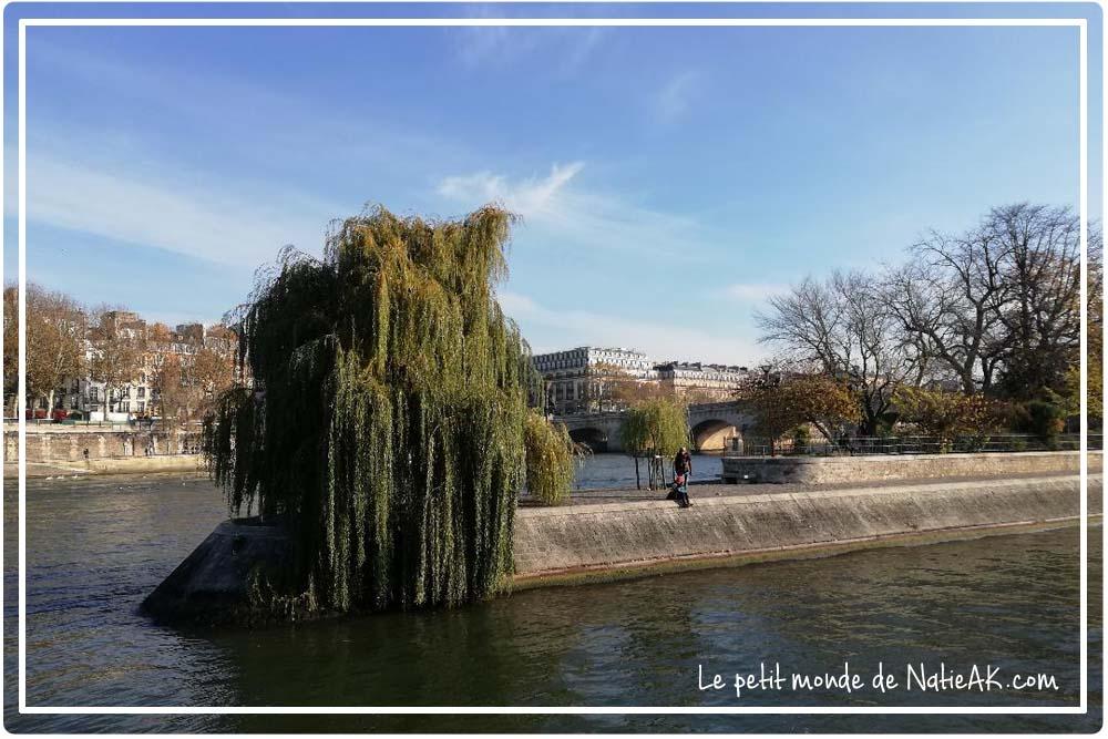 square du vert-galant paris
