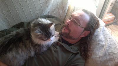gato-amoroso-ronroneo-regazo