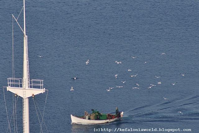 Fishing boat at Paliouras, Kefalonia