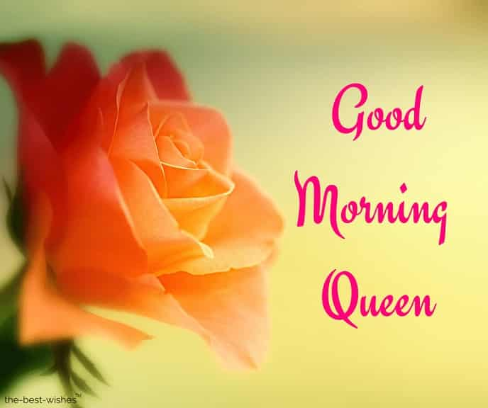 images of good morning queen