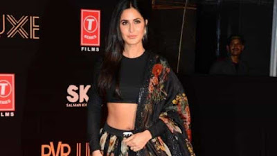 Katrina Kaif might work in a Hollywood Film