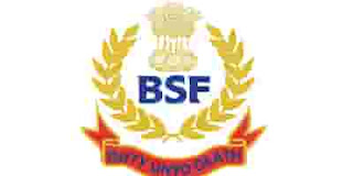 BSF Head Constable HC- RO and HC -RM Result 2020 BSF Released Exam Result,Download BSF HC -RO and HC - RM Result 2020
