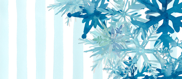 Snowflake Timeline Cover
