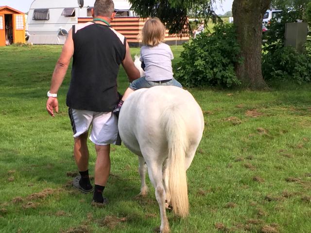 Oh, ein Pony, kann man da mal drauf reiten?