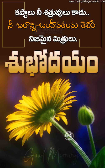good morning telugu quotes, telugu best life changing good morning quotes, telugu motivational messages