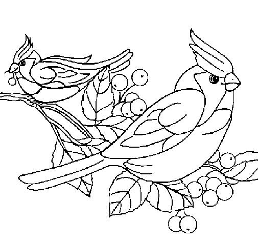 Desenhos de unicórnio para colorir costumam ser muito procurados pelos adeptos dessa prática tão relaxante. ANIMAIS - AVES - PÁSSAROS - ATIVIDADES EXERCÍCIOS DESENHOS