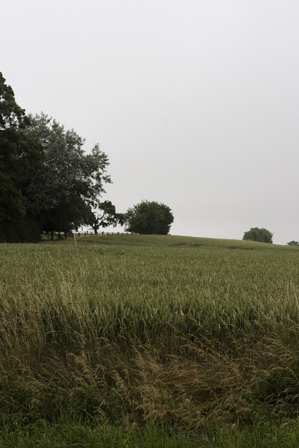 calenberger land, norddeutschland