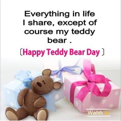 Happy Teddy Day Quotes for  Wife In Hindi