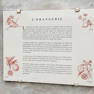 Story of the orange trees in Jardin du Luxembourg