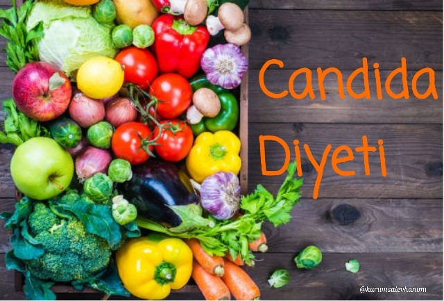 candida diyeti örnek menü