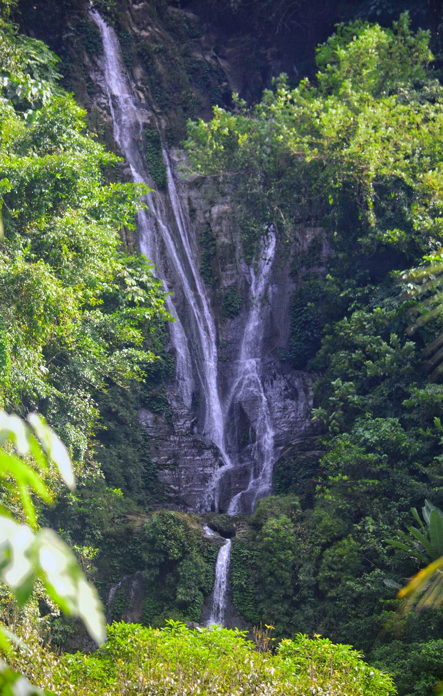 The Tallest Waterfall in Negros Oriental
