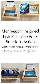 Montessori-inspired Fish Printable Pack Bundle in Action with Free Bonus Printable
