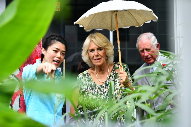 Their Royal Highnesses at Tiong Bahru estate's garden.