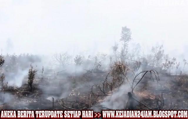 Warganet Minta Polisi Untuk Menangkap Dalang Pembakaran Hutan Jambi