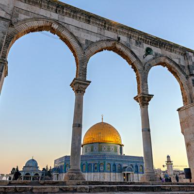 فلسطين الوجع | شهداء غزه | قصائد شعريه للشاعر متولي عيسي