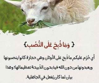 لفهم آيات القرآن الكريم 6.jpg
