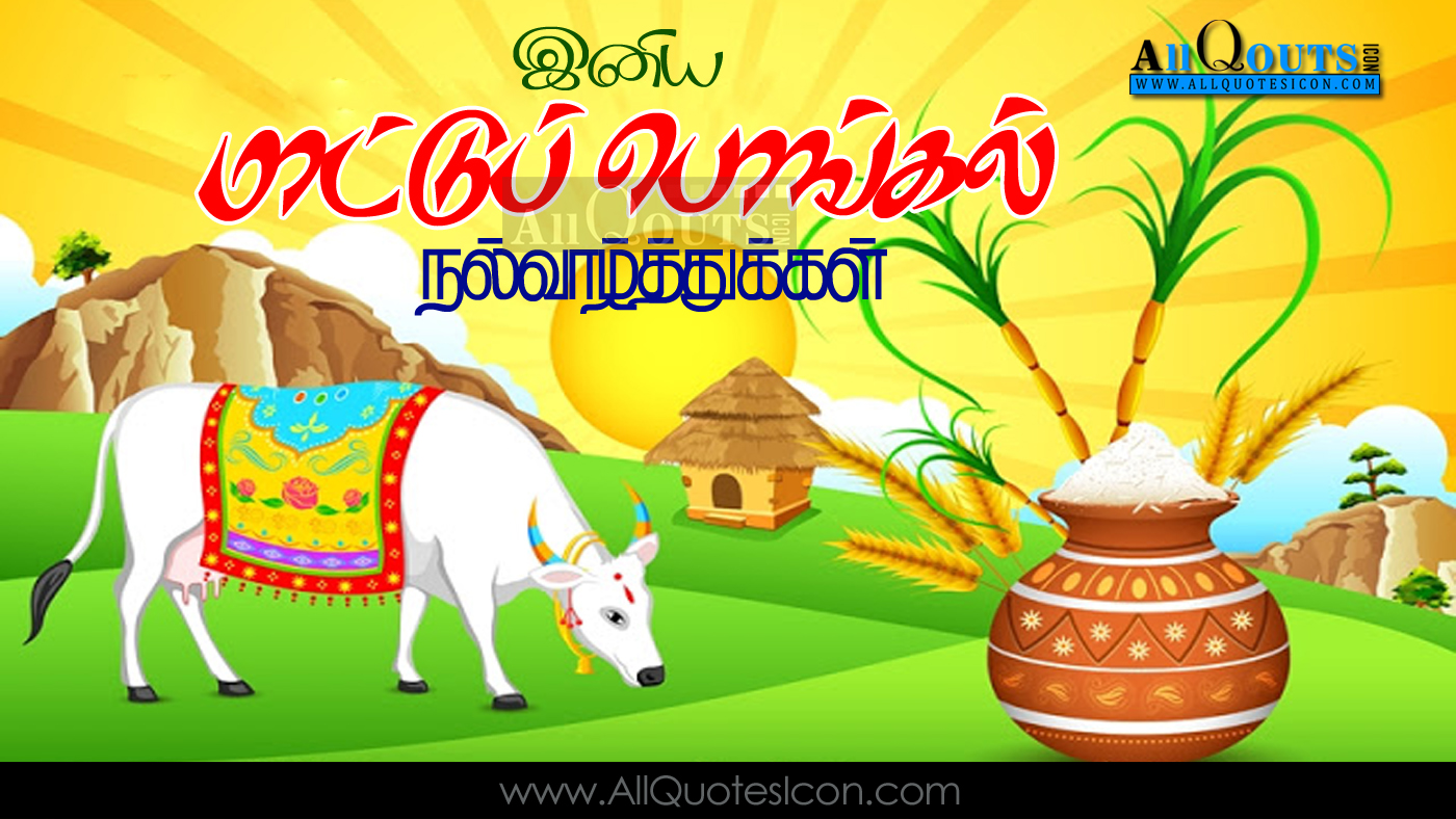 Mattu pongal wishes in tamil hd wallpapers best greetings maatu mattu pongal wishes in tamil mattu pongal hd m4hsunfo