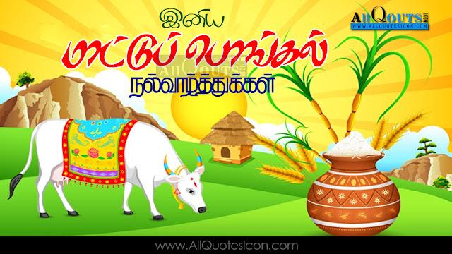 Mattu-Pongal-Wishes-In-Tamil-Mattu-Pongal-HD-Wallpapers-Mattu-Pongal-Festival-Wallpapers-Mattu-Pongal-Information-Best-Mattu-Pongal-HD-Wallpapers