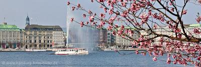 Hamburg Panorama - Alster im Frühling