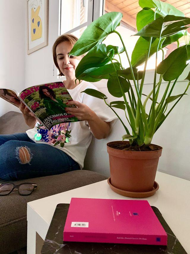 Plantadecora_ObeBlog