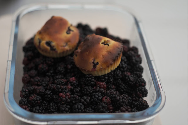 Sugar-free blackberry muffins