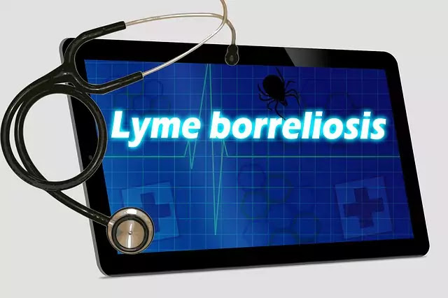 How to know Lyme disease Symptoms And Treatment