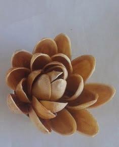 http://manualidades.facilisimo.com/blogs/mas-manualidades/reto-facilisimo-flores-realizadas-con-cascaras-de-pistachos_1213523.html