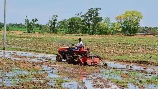 पढिये किसान की मेहनत – नागौर के किसान ने फूलो की खेती करके कमाए करोड़ों रुपये