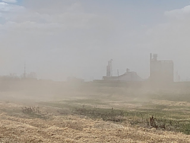 A photo of topsoil blowing away in Cavalier County North Dakota