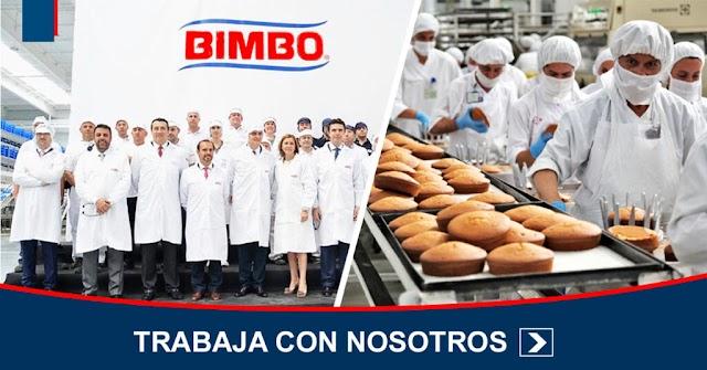 ▷ BIMBO INCORPORA PERSONAL SIN EXPERIENCIA - $70,000 ✅