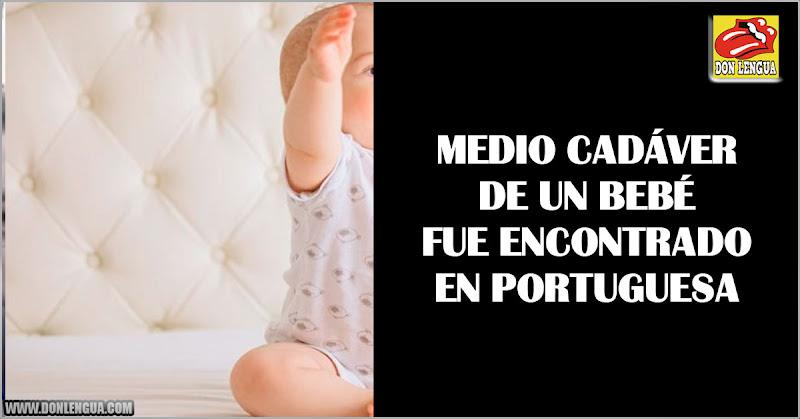 Encuentran la mitad del cuerpo de un niño recién nacido en Portuguesa