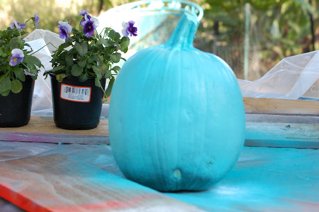 blue, pumpkin, Fall,