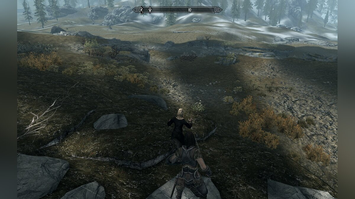 How to remove stripes on characters and textures in Skyrim