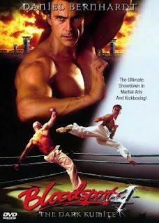 O Grande Dragão Branco 4: O Capítulo Final (1999) Dublado 360p