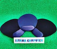 Istana Computer