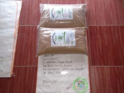Benih pesanan SOEKAMTO Surabaya, Jatim  (Sebelum Packing)