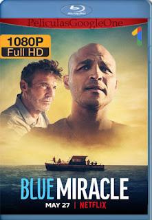 Milagro azul (Blue Miracle) (2021) NF [1080p Web-DL] [Latino-Inglés] [LaPipiotaHD]