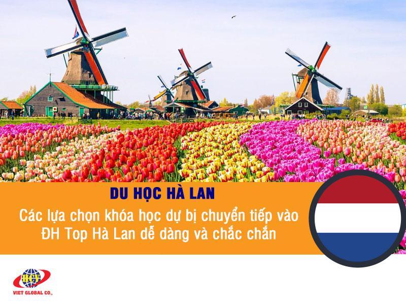 Du học Hà Lan: Các lựa chọn khóa học dự bị chuyển tiếp vào đại học Top Hà Lan dễ dàng và chắc chắn