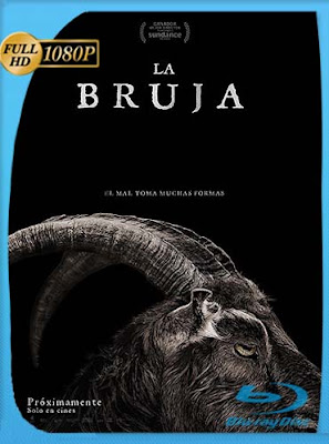 La Bruja : una leyenda de Nueva Inglaterra(2015) HD [1080p] Latino [GoogleDrive] PGD