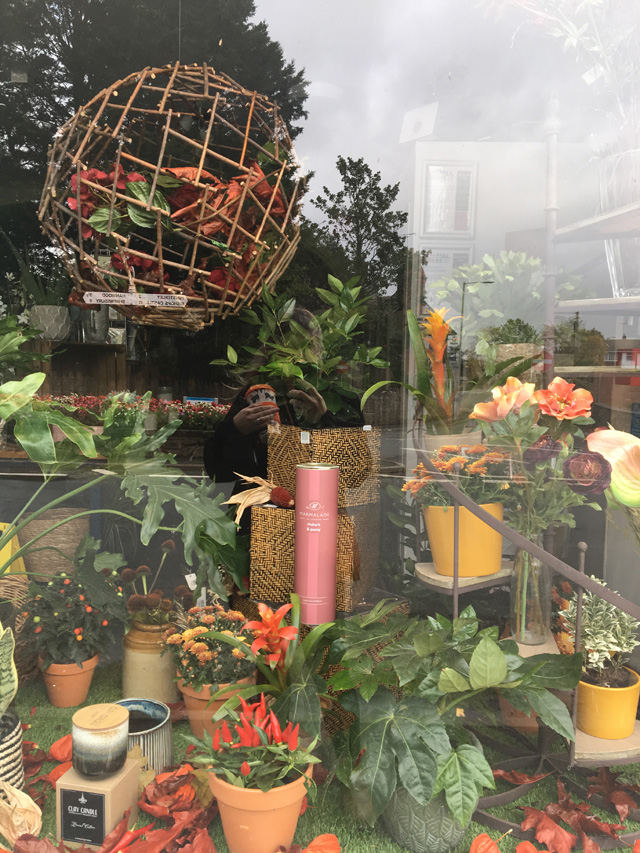 Florists Autumn window