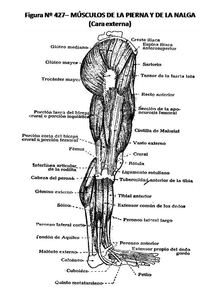 En las piernas de marinasenpai - 4 8