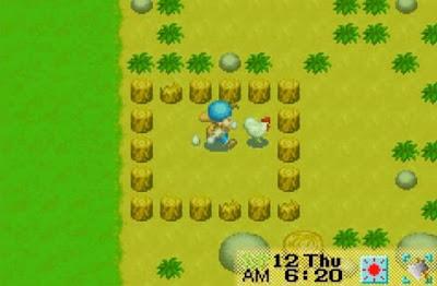 Cara Supaya Telur Tidak Berserakan di Game Harvest Moon