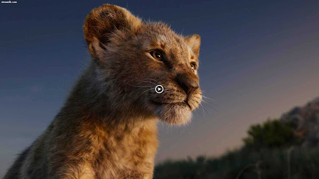 Donald Glover Watch The Lion King 2019 Online Movie Free