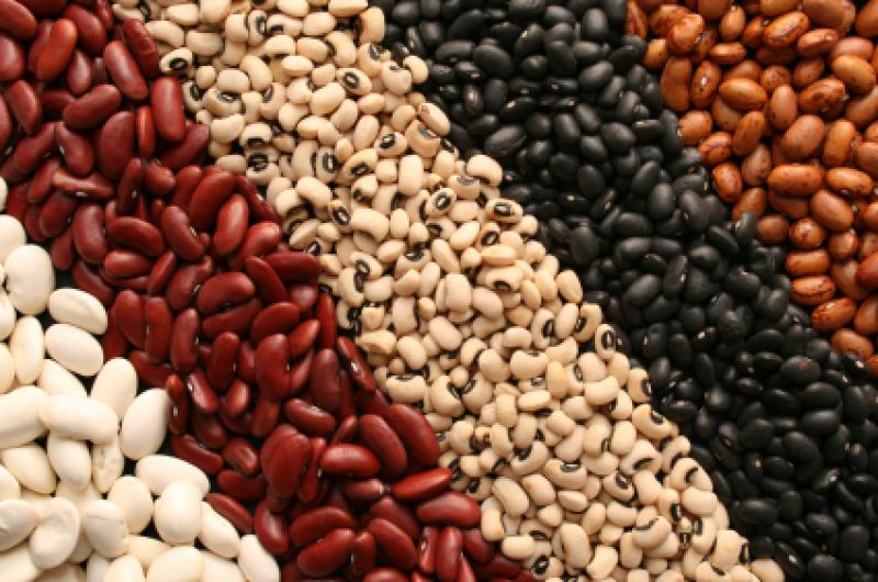 Fontes de proteínas simples que você talvez ignorou