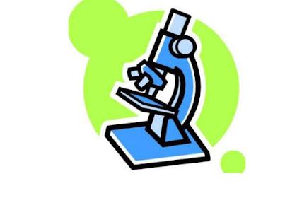 Download Rangkuman Materi UN Biologi SMA Kelas X, XI, dan XII