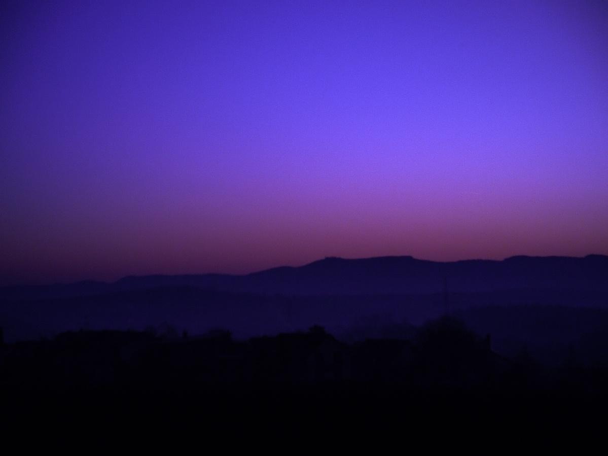 #310 TV Lens f1,4 50mm – Morgenspaziergang (2)