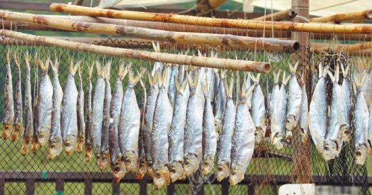 """4 loại cá càng ăn càng """"độc"""": Món số 3 chỉ cần ăn 1kg hại như hút 250 điếu thuốc"""