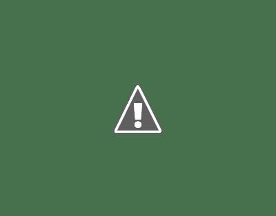 Imagem de loja Séc. XIX
